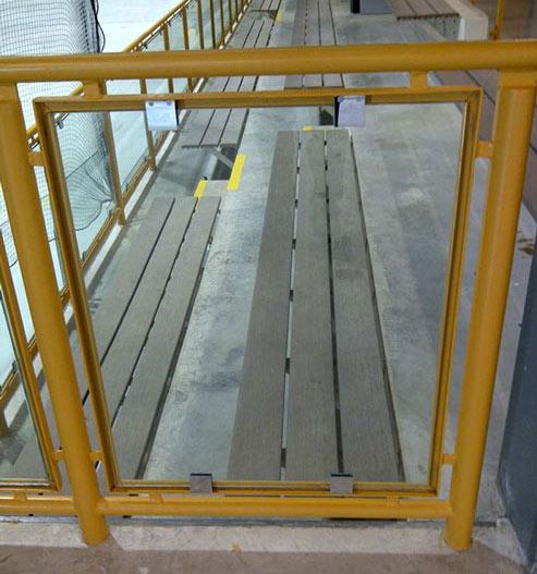 Handrails in hockey rink